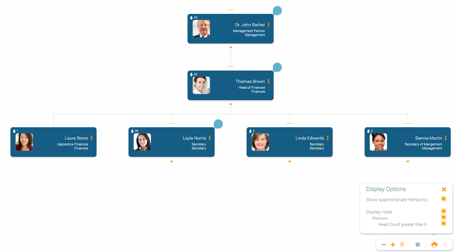 Highlight information in your org chart using display rules in orginio