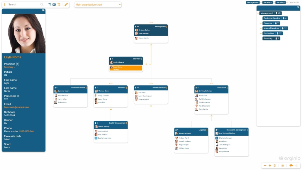 Overview of an org chart in orginio